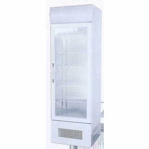 Ascend JGD-23F 23 Cu.Ft Commercial Freezer Merchandiser w/ 1 Glass Door